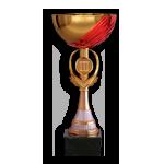 Бронзовый призер III Семейного кубка
